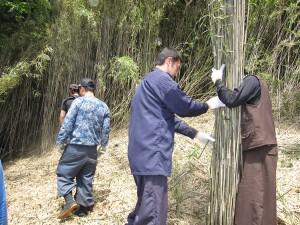 切り出した女竹を大文字へ運びます